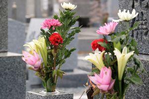 お墓を継承する人がいない人のサムネイル画像