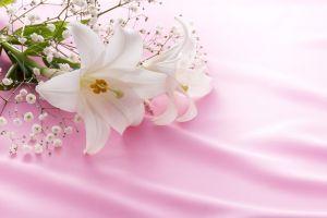 供花を送るタイミングについてのサムネイル画像